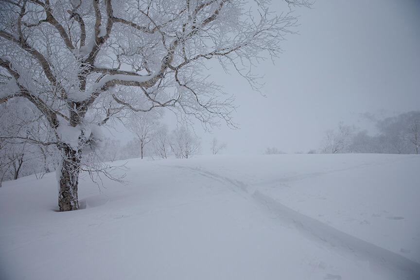 W przypadku głębokiego śniegu warto zabrać rakiety śnieżne lub zastanowić się nad skiturami (fot. Arcteryx)