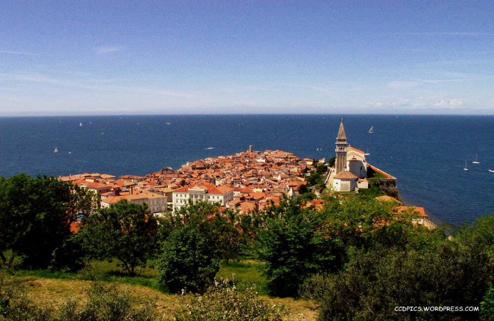 Miasto Piran w okolicy Osp