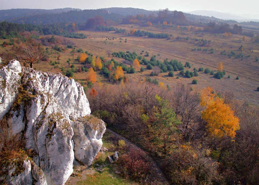 Widok na Turnię Kursantów (fot. autor)