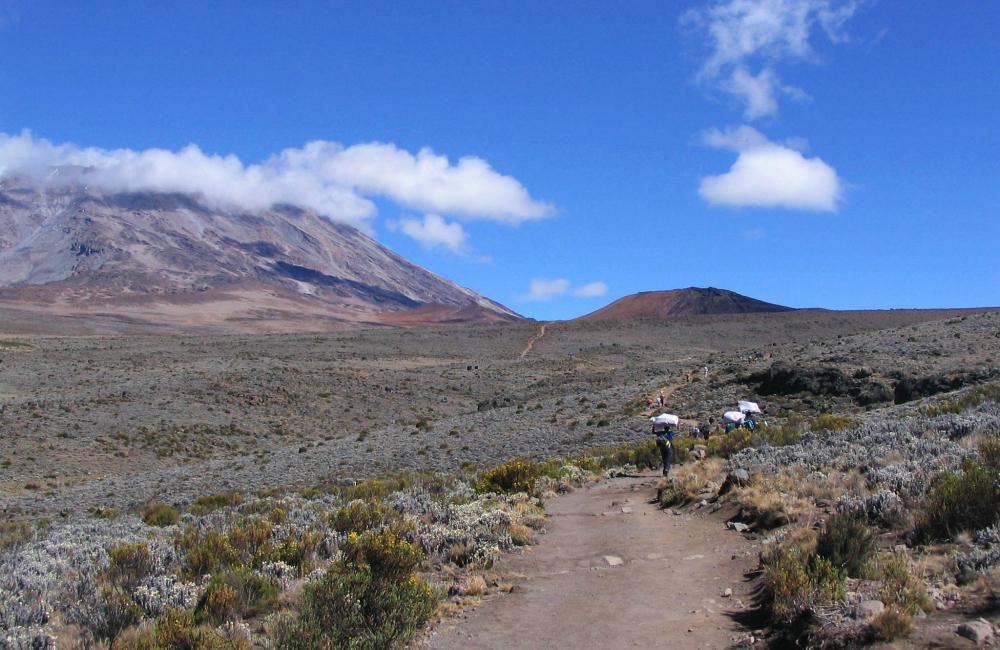 Kilimandżaro (fot. autorka)