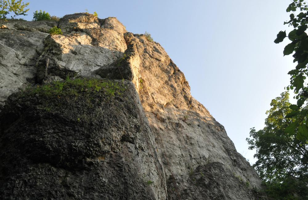 Lewe cmentarzysko (fot.Ola Tyrna)