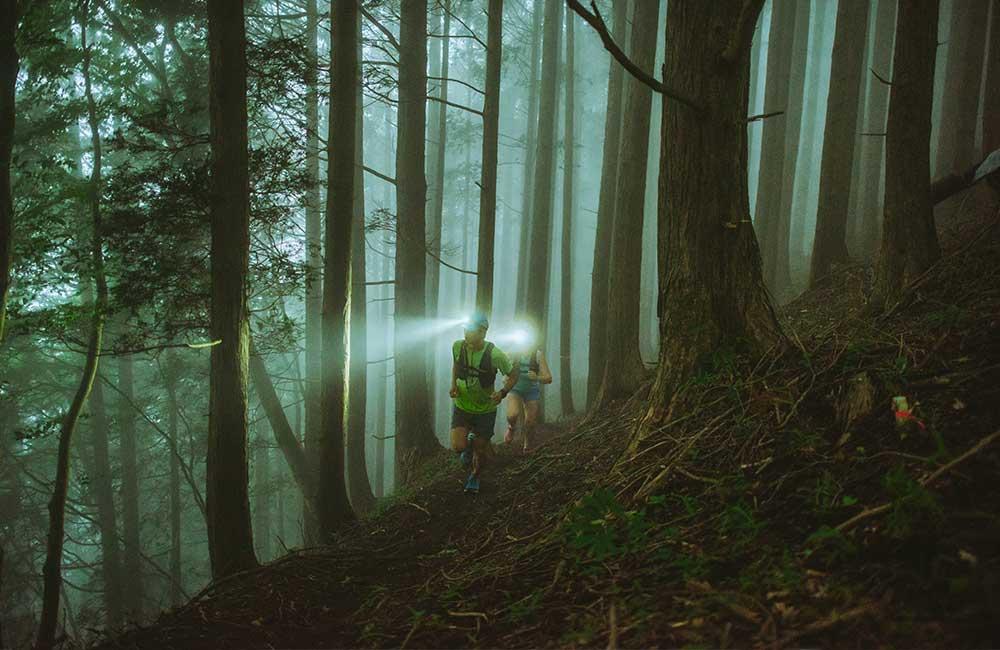 Bieganie z czołówką w lesie.