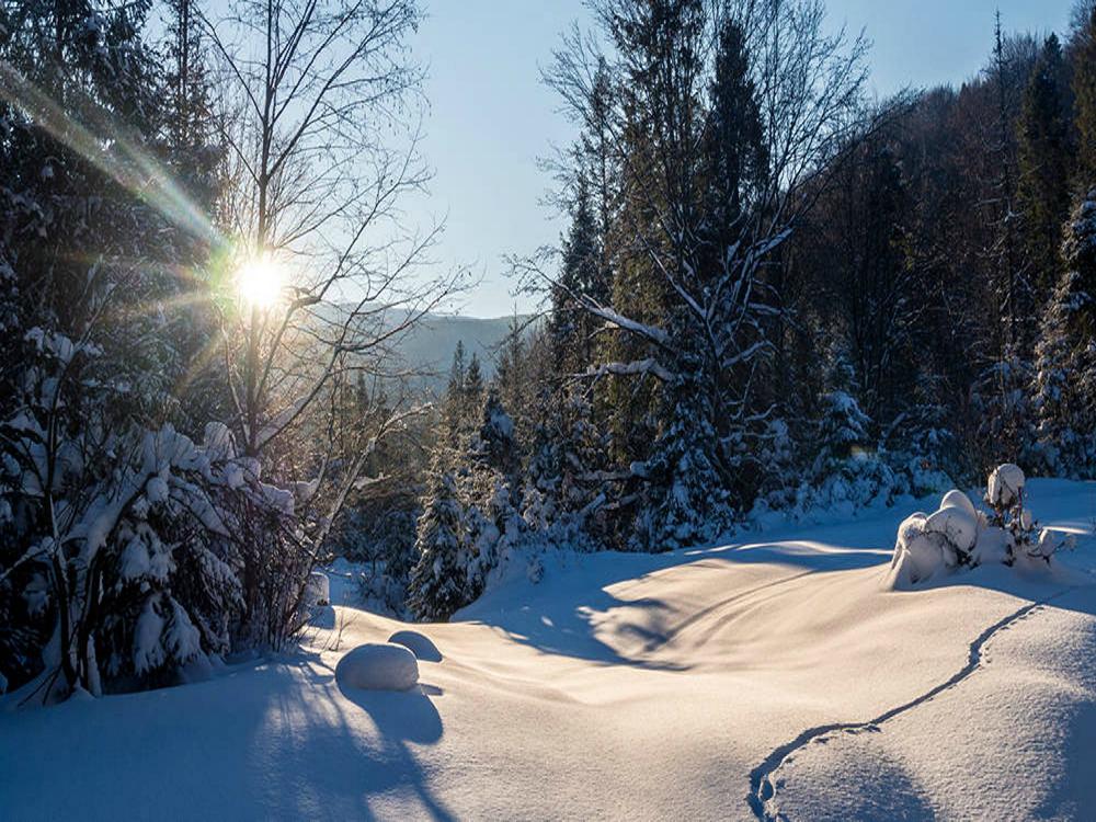 Zima w Karpatach Ukraińskich