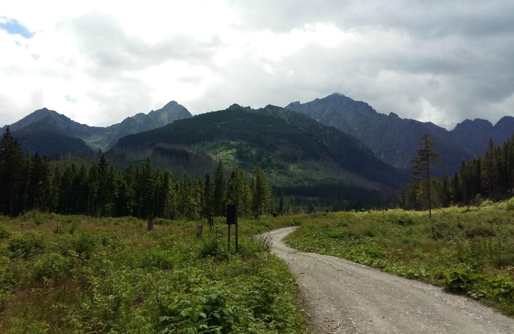 Trening biegacza w Tatrach