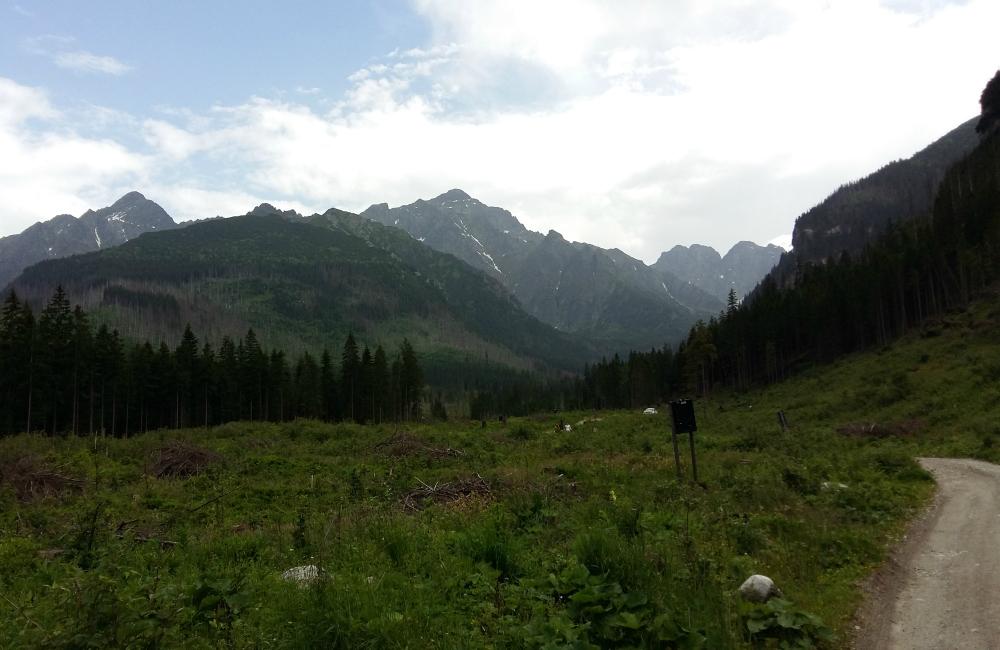 Trenowanie biegów w Tatrach