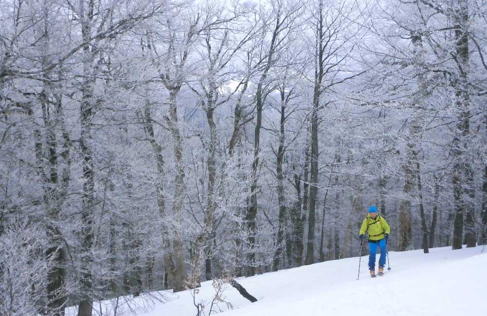 ski-touring w Bieszczadach