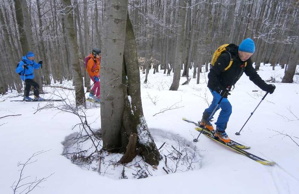 Paportna na skiturach