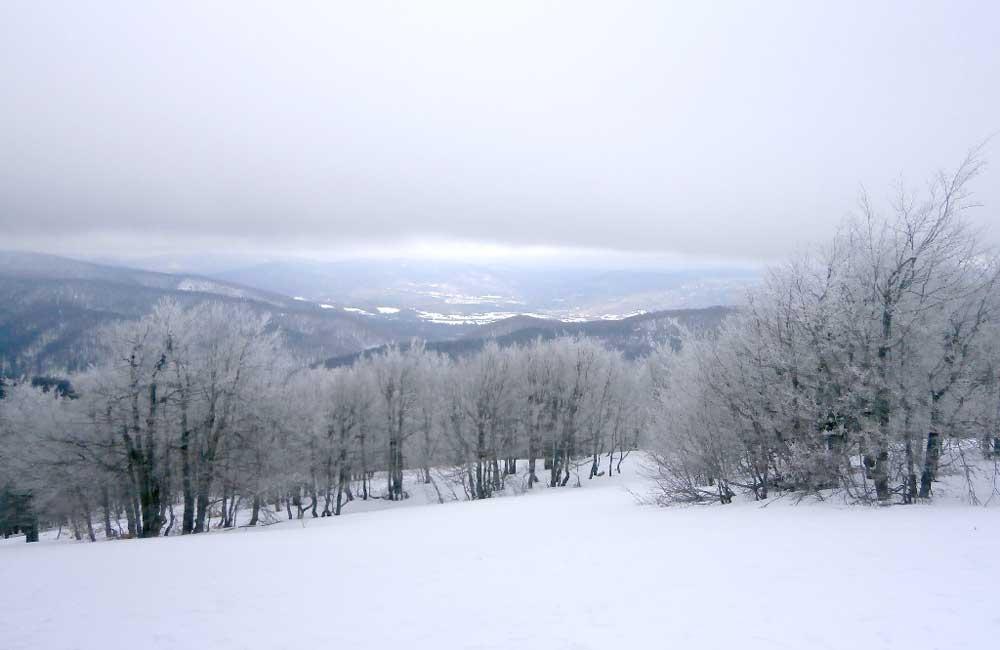 Podkarpacie dla narciarzy
