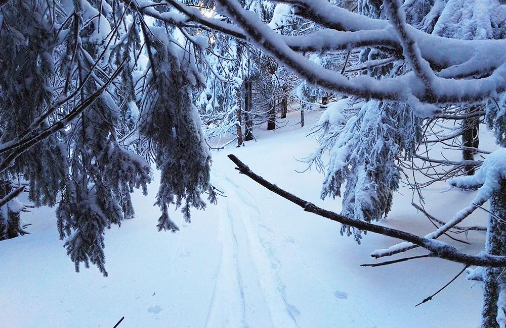 Dlaczego zimą warto chodzić po górach?