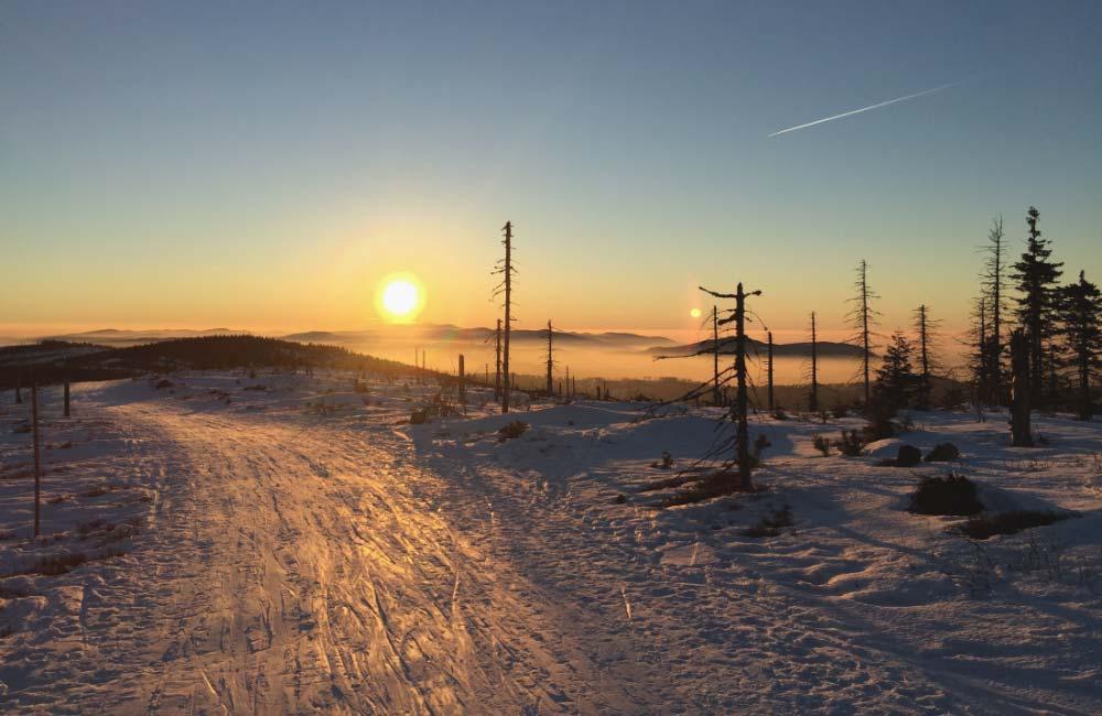 Zima w Beskidzie Śląskim