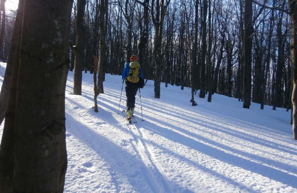 Gdzie się wybrać na skitury