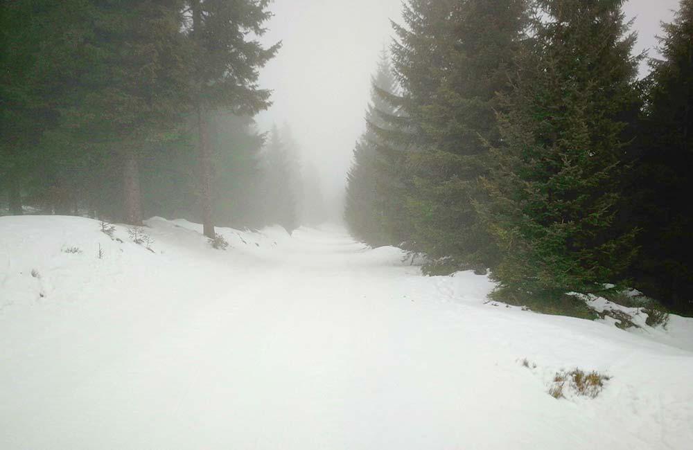 Gdzie się wybrać na skitury?