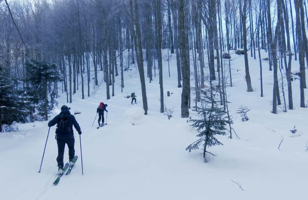 Matragona na skiturach