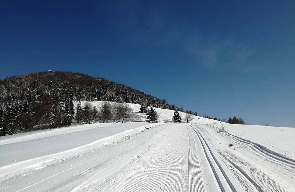 Mogielica na nartach