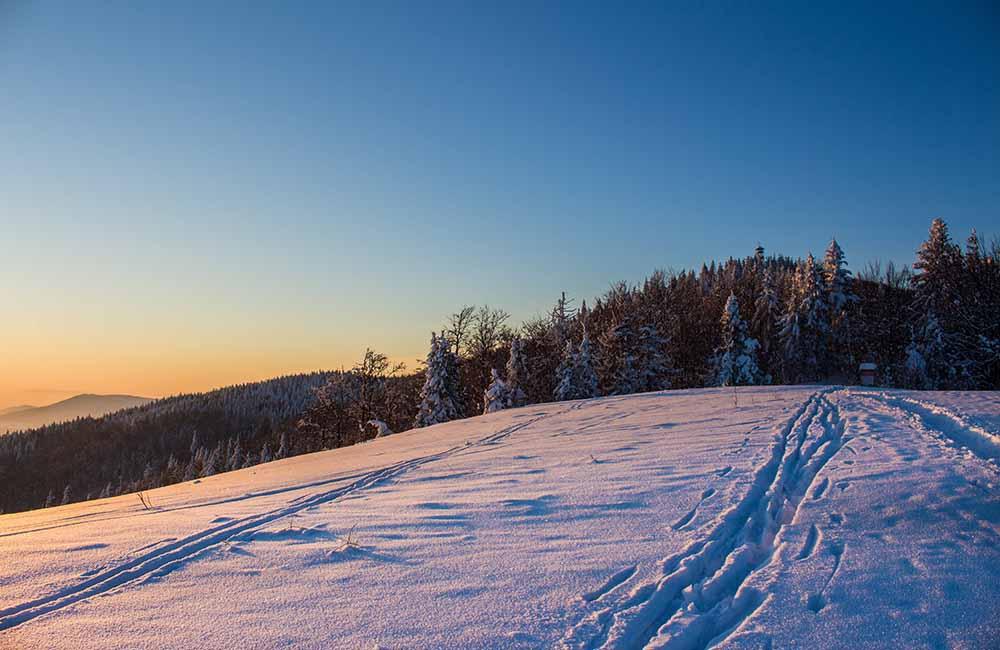 Mogielica w śniegu