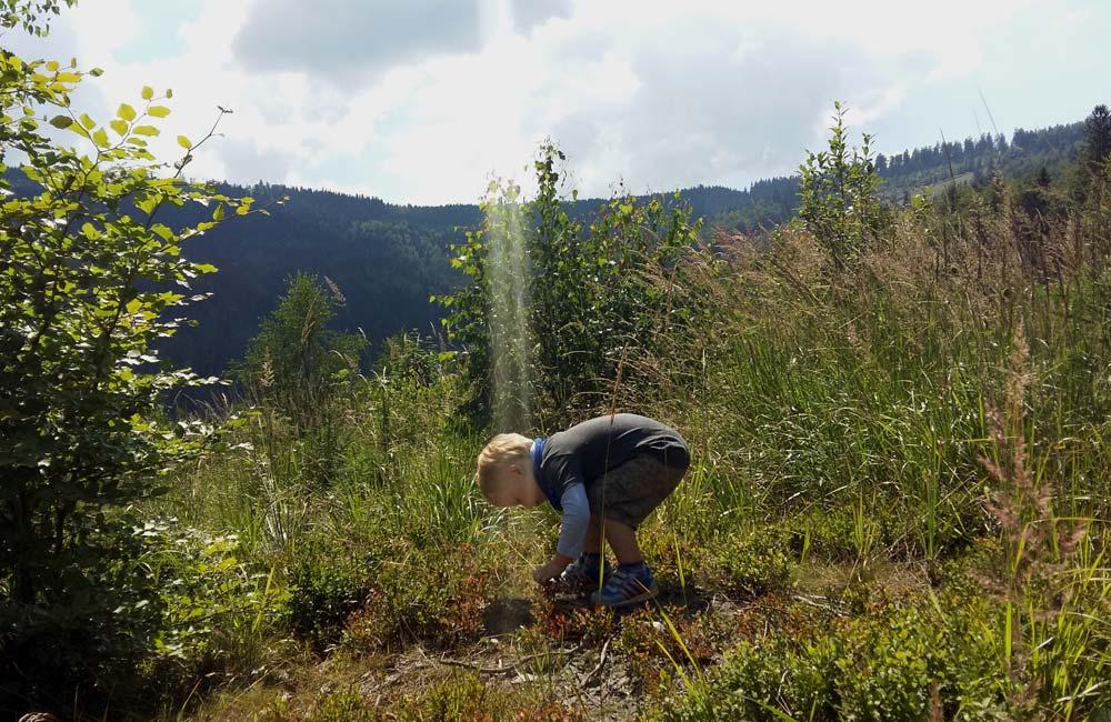 Trasy dla maluchów w Beskidzie Śląskim