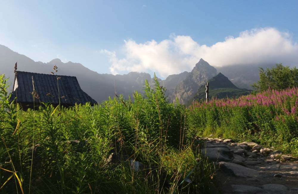 Wspinaczka dla początkujących w rejonie Hali Gąsienicowej