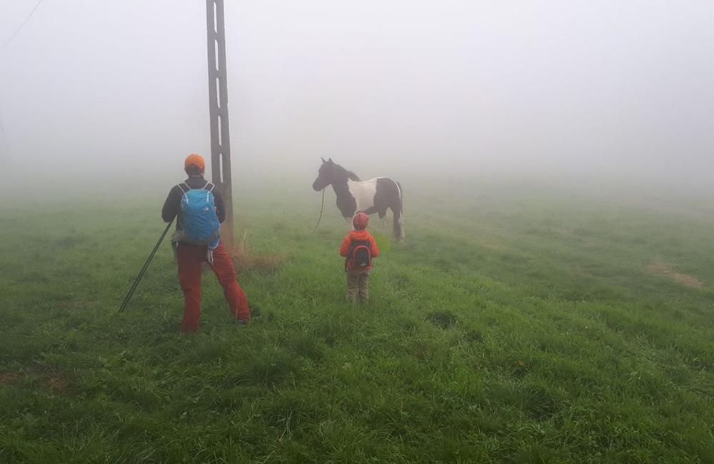 Schronisko na Przegibku - Przełęcz Przegibek w czasie mgły