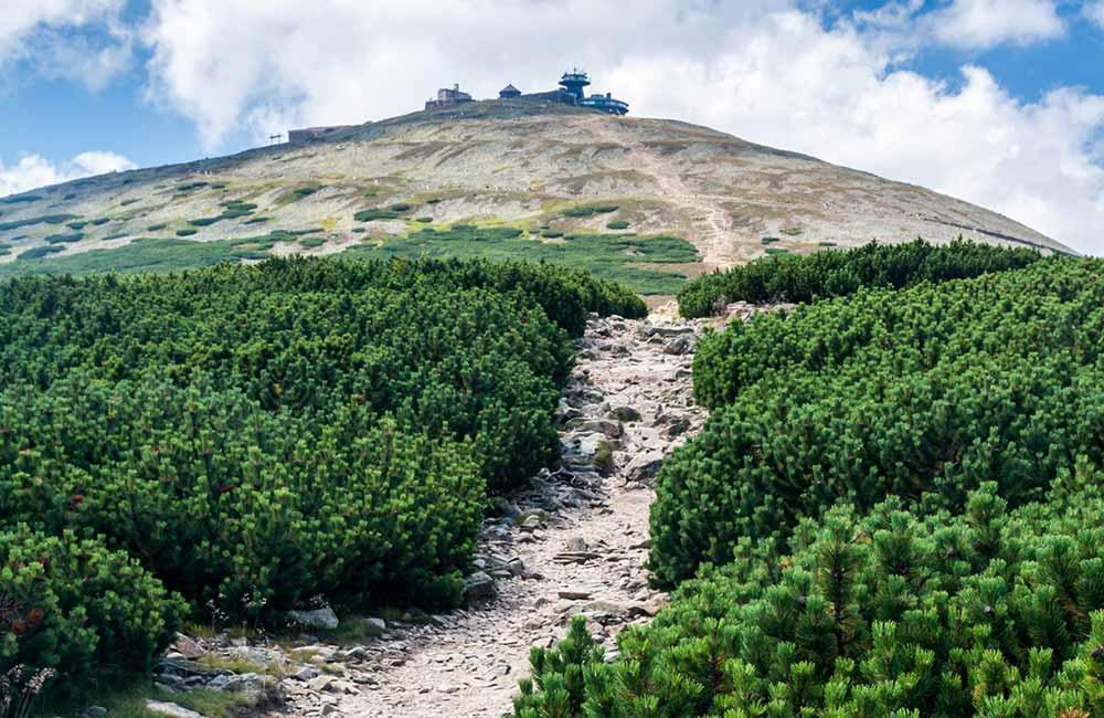 Jak przejść Główny Szlak Sudecki?
