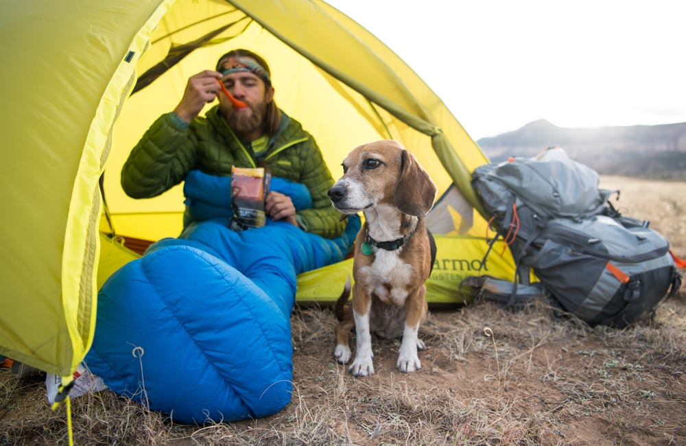 Jedzenie pod namiotem ze swoim psim kompanem