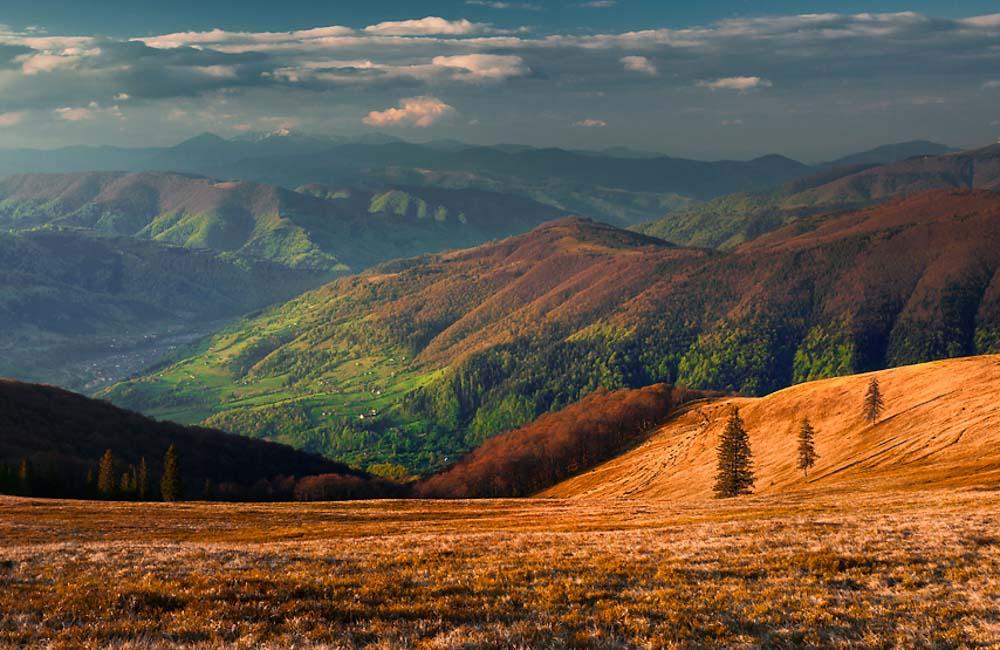 Świdowiec jesienią