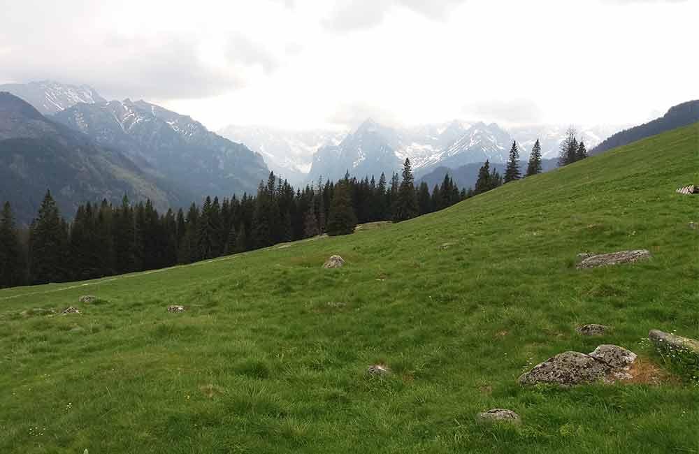 Szlaki w Tatrach dla początkujących turystów - rusinowa polana