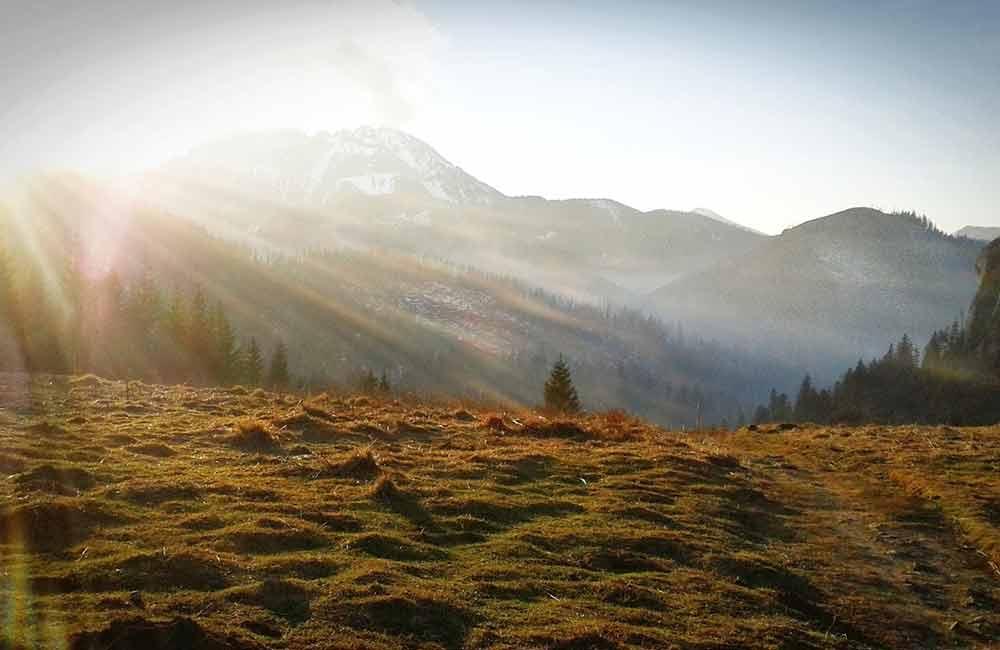 Szlaki dla każdego w Tatrach - Miętusi Przysłop z widokiem na Kominiarski Wierch