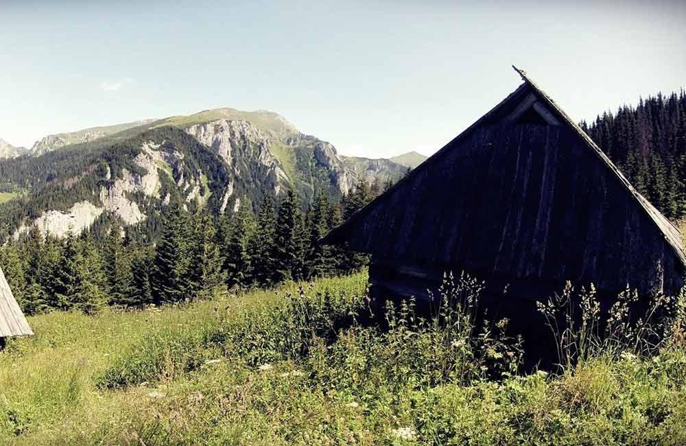 Panorama Tatr z polany na Stołach