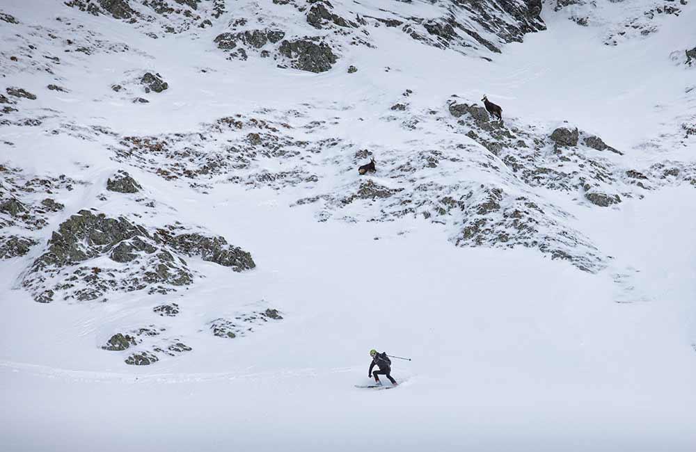 Co to jest skituring?