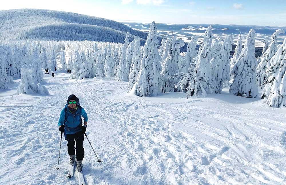 podejście ze Schroniska na Śnieżniku