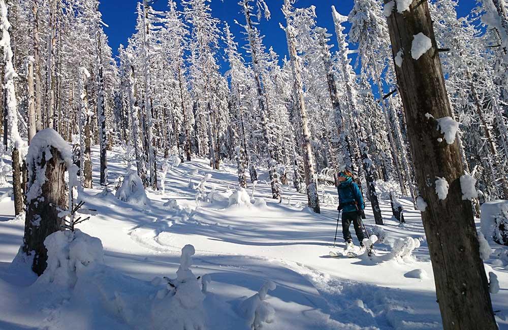 zjazd z Romanki na nartach skiturowych