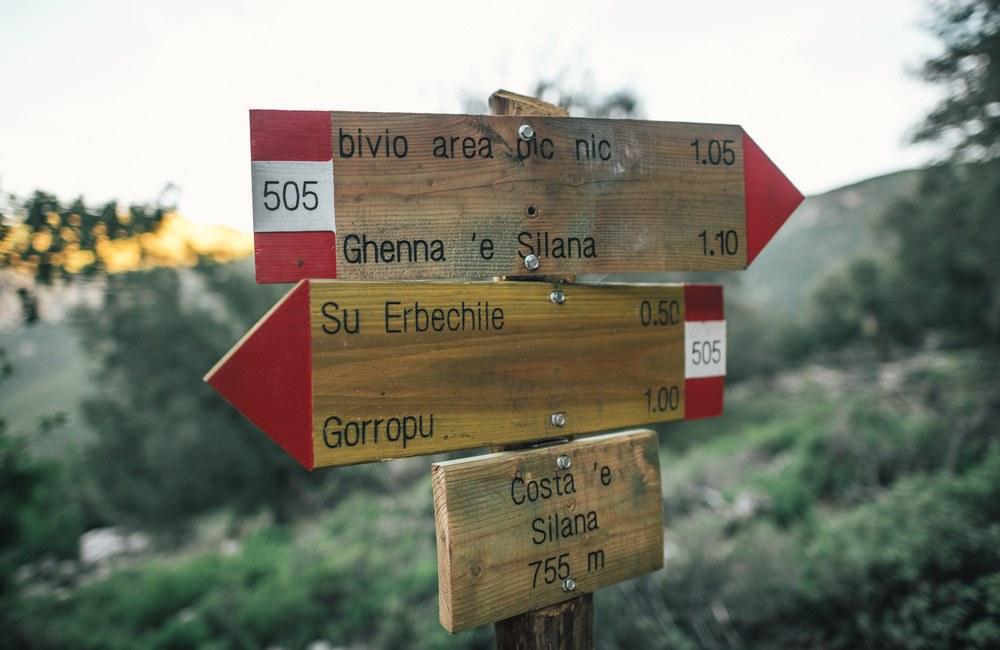 wycieczki w góry