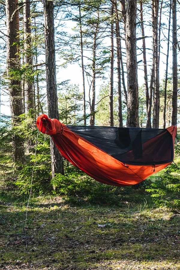 Nocleg w lesie