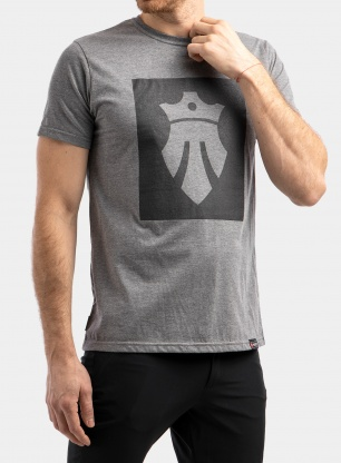 Koszulka Majesty Team t-shirt - grey